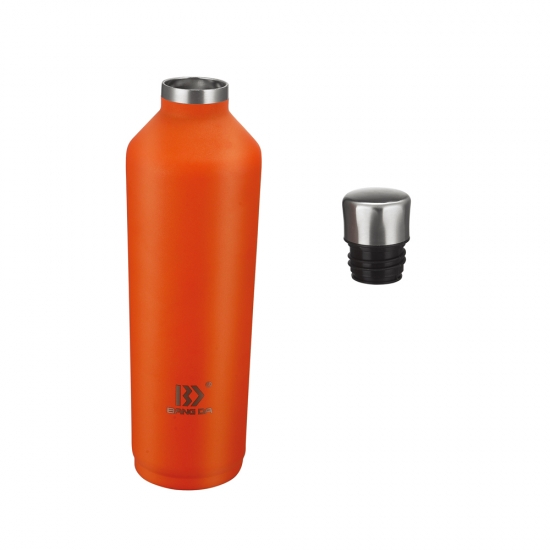Stainless Steel Insulated Bottle